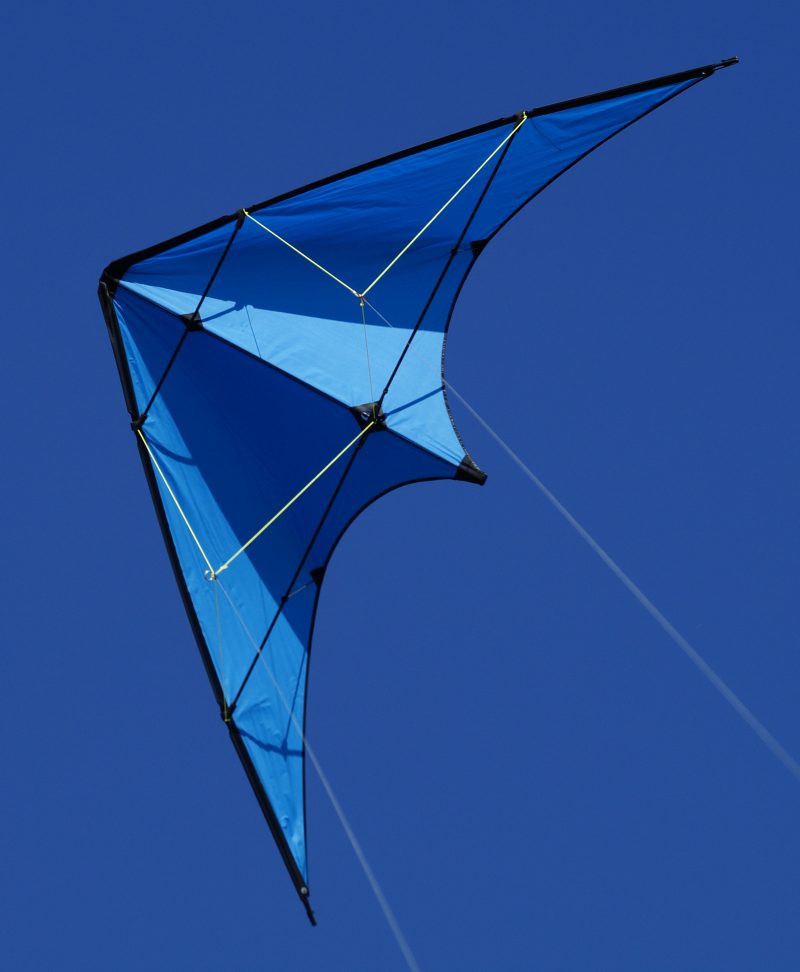 Unknown kite 19