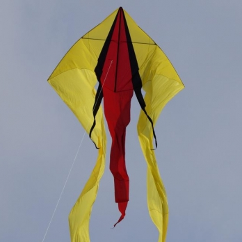 CIM F-tail red-black-yellow