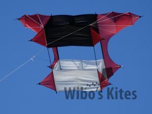 Dida Kites Cody 50