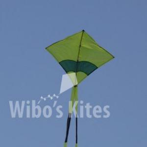 Fighter kite