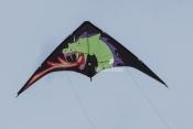 Go Fly a Kite - Dragon