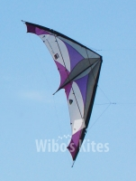 HQ - TramontanaWorld record Kite