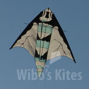 Insect kite