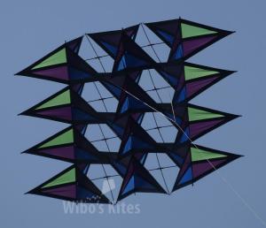 Pely-Variant Green-Purple-blue-black