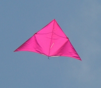 Pink Delta
