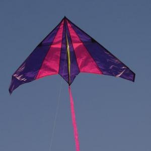 Purple-Pink Delta