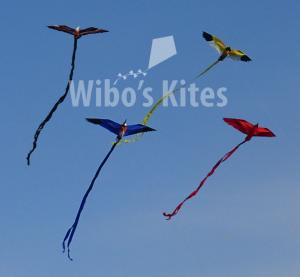 Rhombus Mini Bird Kites