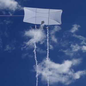 Siegers Vliegers Genki White