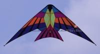 Sky Delight Kites - Kestrel (by Joel Scholz)