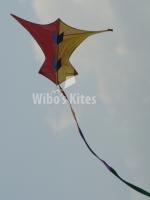 Storm vlieger
